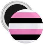 Black, Pink And White Stripes  By Celeste Khoncepts Com 20x28 3  Button Magnet