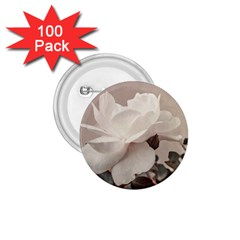 White Rose Vintage Style Photo In Ocher Colors 1 75  Button (100 Pack) by dflcprints