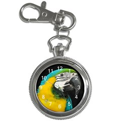Blue and Gold Macaw Key Chain Watch by sophspics