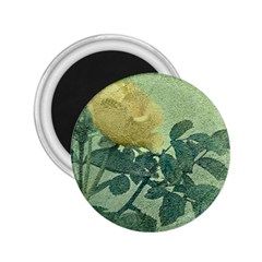 Yellow Rose Vintage Style  2 25  Button Magnet by dflcprints