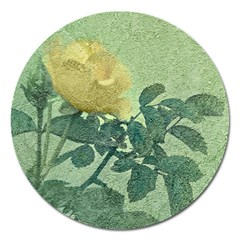 Yellow Rose Vintage Style  Magnet 5  (round) by dflcprints
