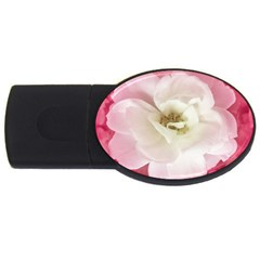 White Rose With Pink Leaves Around  2gb Usb Flash Drive (oval) by dflcprints