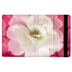 White Rose With Pink Leaves Around  Apple Ipad 3/4 Flip Case by dflcprints