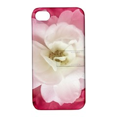 White Rose With Pink Leaves Around  Apple Iphone 4/4s Hardshell Case With Stand by dflcprints