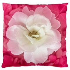 White Rose With Pink Leaves Around  Large Flano Cushion Case (two Sides) by dflcprints