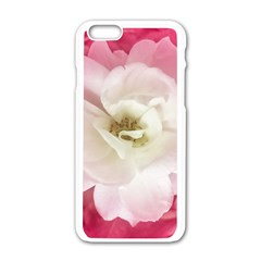 White Rose With Pink Leaves Around  Apple Iphone 6 White Enamel Case by dflcprints