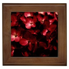 Red Flowers Bouquet In Black Background Photography Framed Ceramic Tile by dflcprints