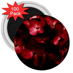 Red Flowers Bouquet In Black Background Photography 3  Button Magnet (100 Pack) by dflcprints