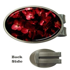 Red Flowers Bouquet In Black Background Photography Money Clip (oval) by dflcprints