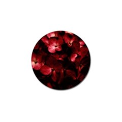 Red Flowers Bouquet In Black Background Photography Golf Ball Marker by dflcprints