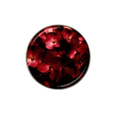 Red Flowers Bouquet In Black Background Photography Golf Ball Marker 10 Pack (for Hat Clip) by dflcprints
