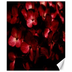 Red Flowers Bouquet In Black Background Photography Canvas 8  X 10  (unframed) by dflcprints