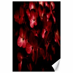 Red Flowers Bouquet In Black Background Photography Canvas 12  X 18  (unframed) by dflcprints