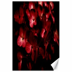Red Flowers Bouquet In Black Background Photography Canvas 20  X 30  (unframed) by dflcprints