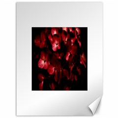 Red Flowers Bouquet In Black Background Photography Canvas 36  X 48  (unframed) by dflcprints