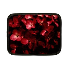 Red Flowers Bouquet In Black Background Photography Netbook Sleeve (small) by dflcprints