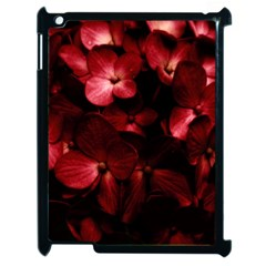 Red Flowers Bouquet In Black Background Photography Apple Ipad 2 Case (black) by dflcprints