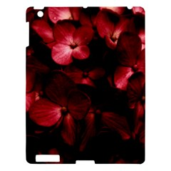 Red Flowers Bouquet In Black Background Photography Apple Ipad 3/4 Hardshell Case by dflcprints