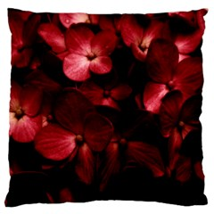Red Flowers Bouquet In Black Background Photography Large Cushion Case (single Sided)  by dflcprints
