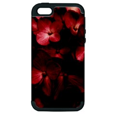 Red Flowers Bouquet In Black Background Photography Apple Iphone 5 Hardshell Case (pc+silicone) by dflcprints