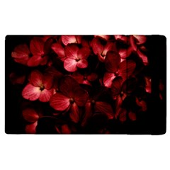 Red Flowers Bouquet In Black Background Photography Apple Ipad 2 Flip Case by dflcprints