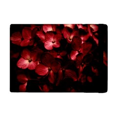 Red Flowers Bouquet In Black Background Photography Apple Ipad Mini Flip Case by dflcprints