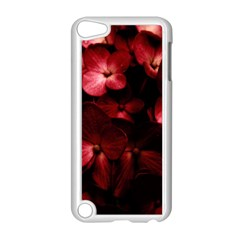 Red Flowers Bouquet In Black Background Photography Apple Ipod Touch 5 Case (white) by dflcprints