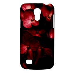 Red Flowers Bouquet In Black Background Photography Samsung Galaxy S4 Mini (gt I9190) Hardshell Case