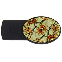 Floral Motif Print Pattern Collage 2gb Usb Flash Drive (oval) by dflcprints