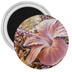 Fantasy Colors Hibiscus Flower Digital Photography 3  Button Magnet by dflcprints