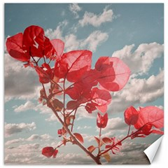 Flowers In The Sky Canvas 12  X 12  (unframed) by dflcprints