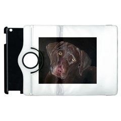 Inquisitive Chocolate Lab Apple Ipad 3/4 Flip 360 Case by LabsandRetrievers
