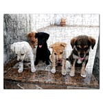 Puppy  - Jigsaw Puzzle (Rectangular)