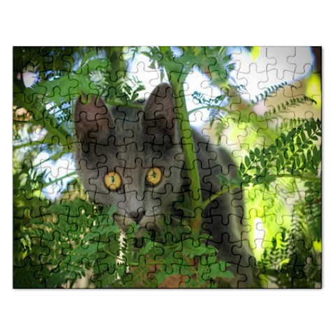 Cat By Pamela Sue Goforth   Jigsaw Puzzle (rectangular)   Vgq1htotkuyx   Www Artscow Com Front