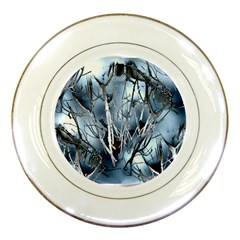 Abstract Of Frozen Bush Porcelain Display Plate by canvasngiftshop