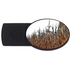 Abstract Of A Cornfield 4gb Usb Flash Drive (oval) by bloomingvinedesign