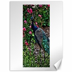 Peacock With Roses Canvas 36  X 48  (unframed) by bloomingvinedesign
