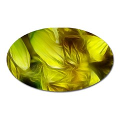 Abstract Yellow Daffodils Magnet (oval) by bloomingvinedesign