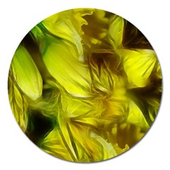 Abstract Yellow Daffodils Magnet 5  (round) by bloomingvinedesign