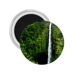 Akaka Falls 2 25  Button Magnet by bloomingvinedesign