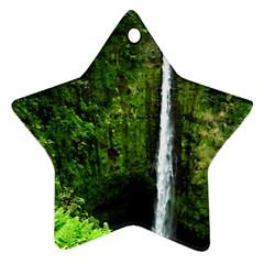 Akaka Falls Star Ornament by bloomingvinedesign
