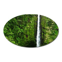Akaka Falls Magnet (oval) by bloomingvinedesign