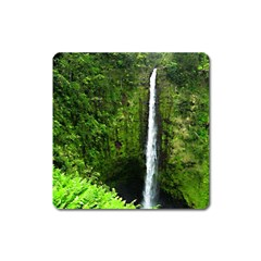 Akaka Falls Magnet (square) by bloomingvinedesign