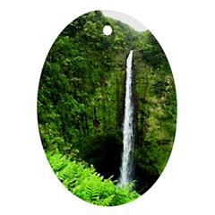 Akaka Falls Oval Ornament (two Sides) by bloomingvinedesign