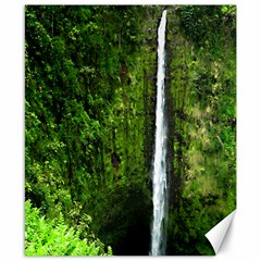 Akaka Falls Canvas 8  X 10  (unframed) by bloomingvinedesign