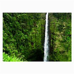 Akaka Falls Glasses Cloth (large, Two Sided) by bloomingvinedesign