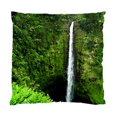 Akaka Falls Cushion Case (single Sided)  by bloomingvinedesign