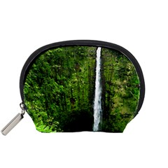Akaka Falls Accessory Pouch (small) by bloomingvinedesign
