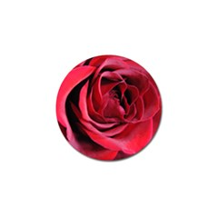 An Open Rose Golf Ball Marker 10 Pack by bloomingvinedesign