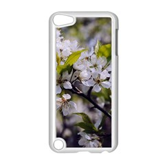 Apple Blossoms Apple Ipod Touch 5 Case (white) by bloomingvinedesign